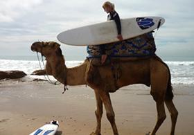 Kamelsurf