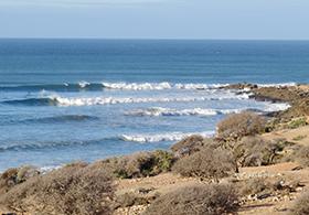 Surf_5