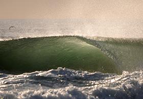 Wave france