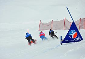 Skier-Cross