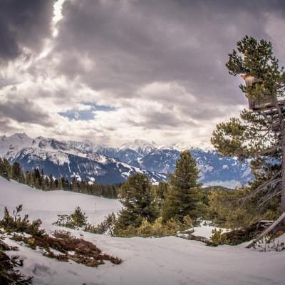 Beste Panorama - Aussicht vom Hochstand