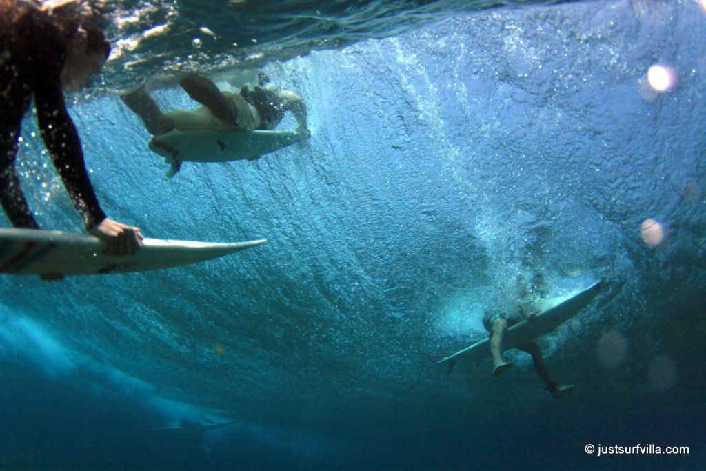 Surfen bei den Malediven